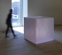 Pink Tons (2009) Roni Horn